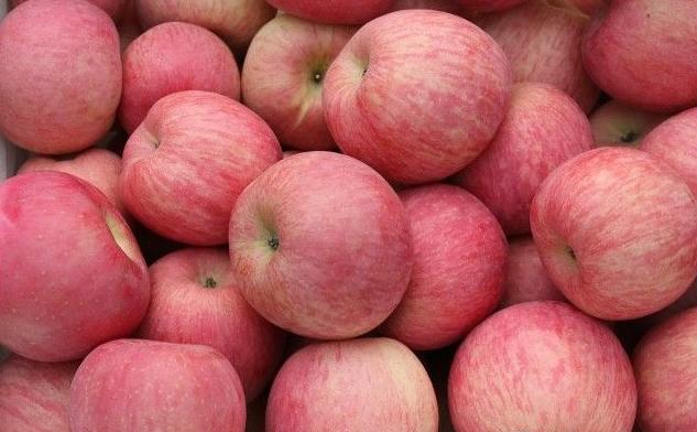 山东红富士苹果价格山东苹果价格